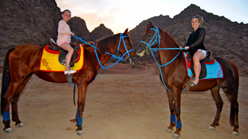 Horse Riding Excursion in Sharm El Sheikh Desert