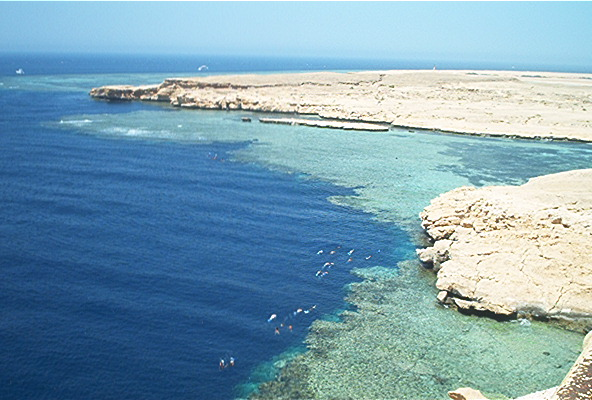 Barracuda Bay - National Park of Ras Mohamed