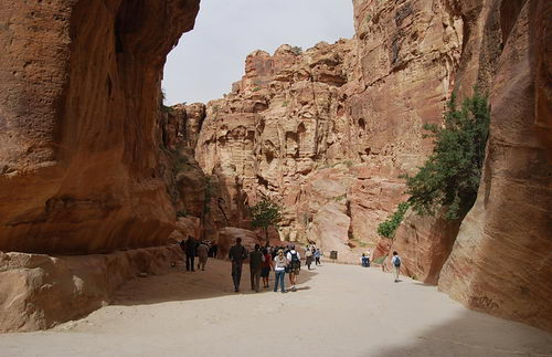 The canyon - Petra