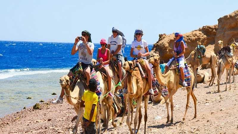 Camel Ride on the Beach - Blue Hole