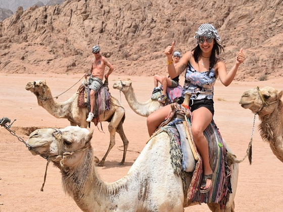 Camel Ride Adventure Sharm El Sheikh Desert