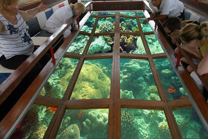 Glass Bottom Boat Trip Sharm El Sheikh