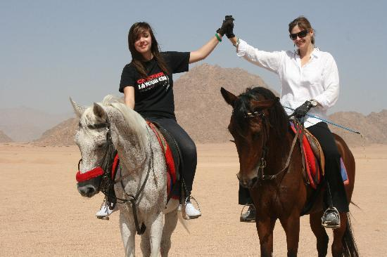 Horse Riding Sharm El Sheikh Desert