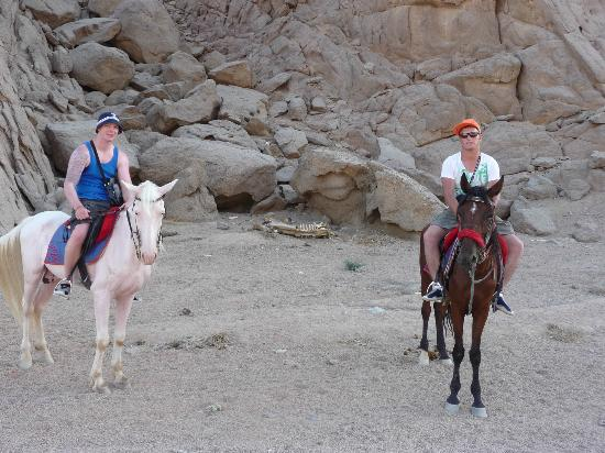Horse Riding Adventure Sharm El Sheikh Desert